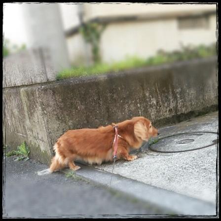 2014-09-09_10.28.01.jpg